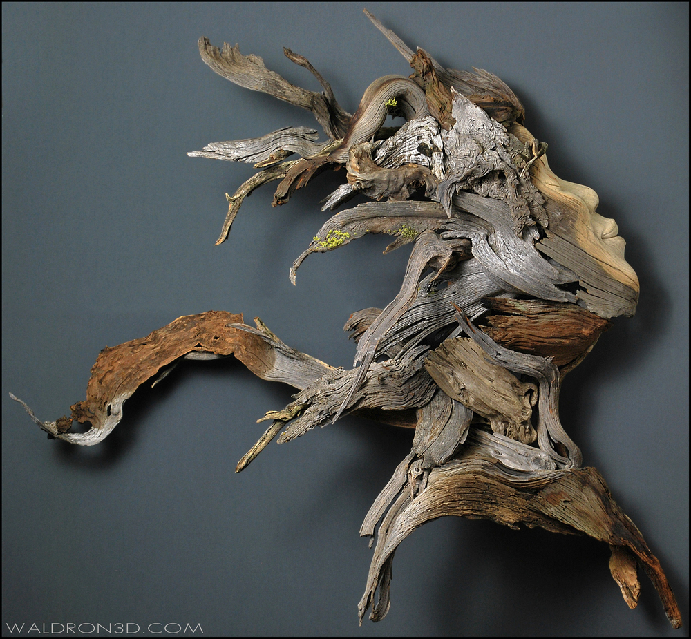 || EMERGENCE || WALDRON 3D SCULPTURAL EXPRESSIONS - CONSTRUCTED FROM FORAGED, WEATHERED PIECES OF HIGH DESERT WOOD.