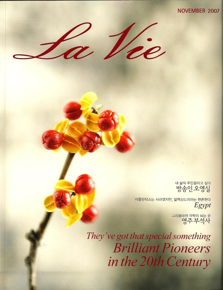 2007-11 La Vie cover.jpg
