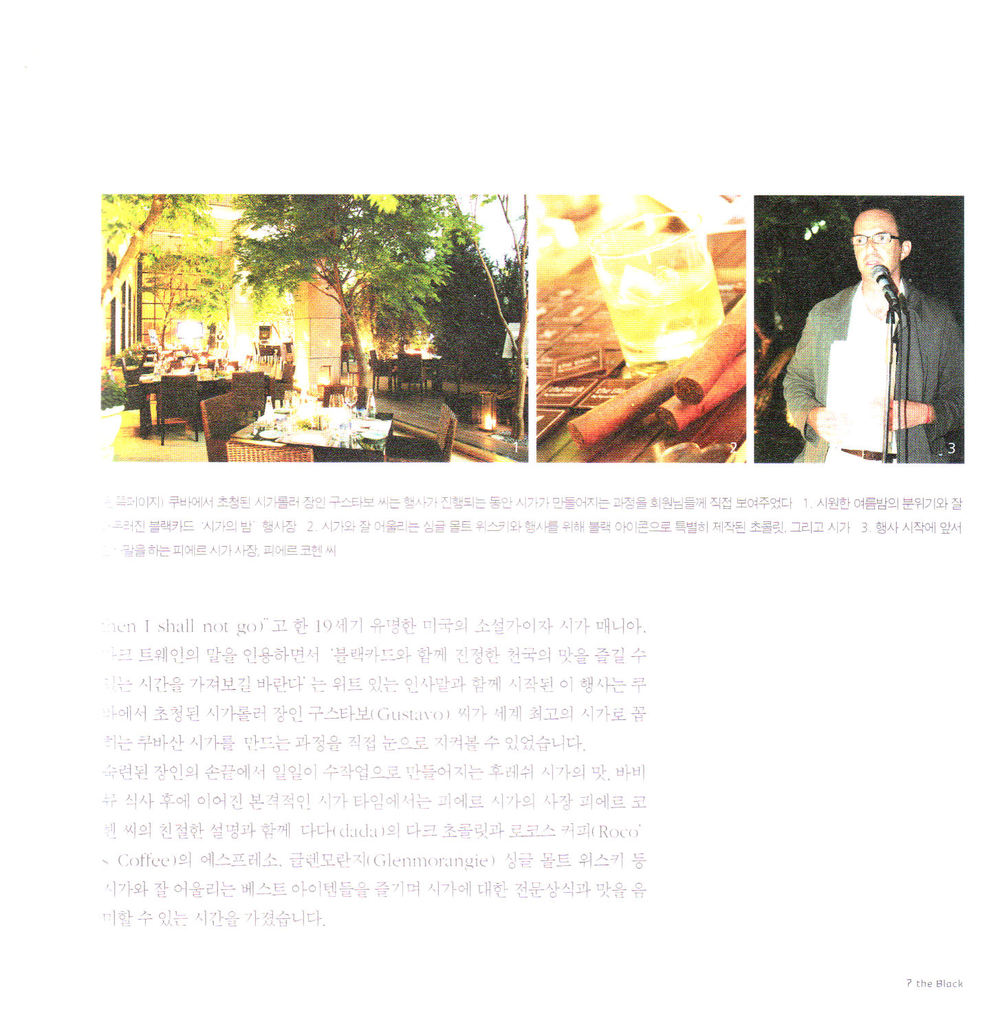 2006-8 Hyundai black card article 2.jpg