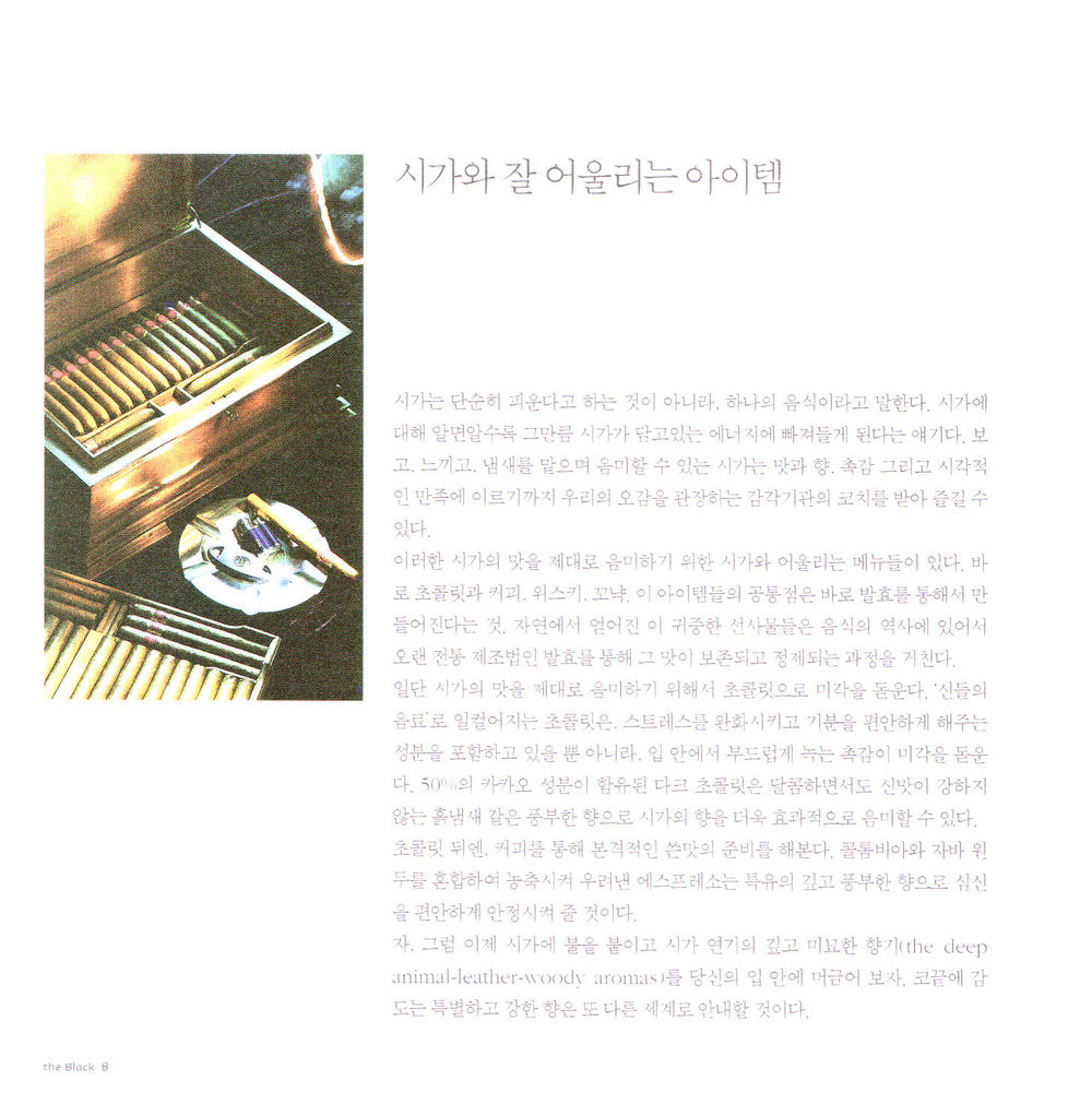 2006-8 Hyundai black card article 3.jpg