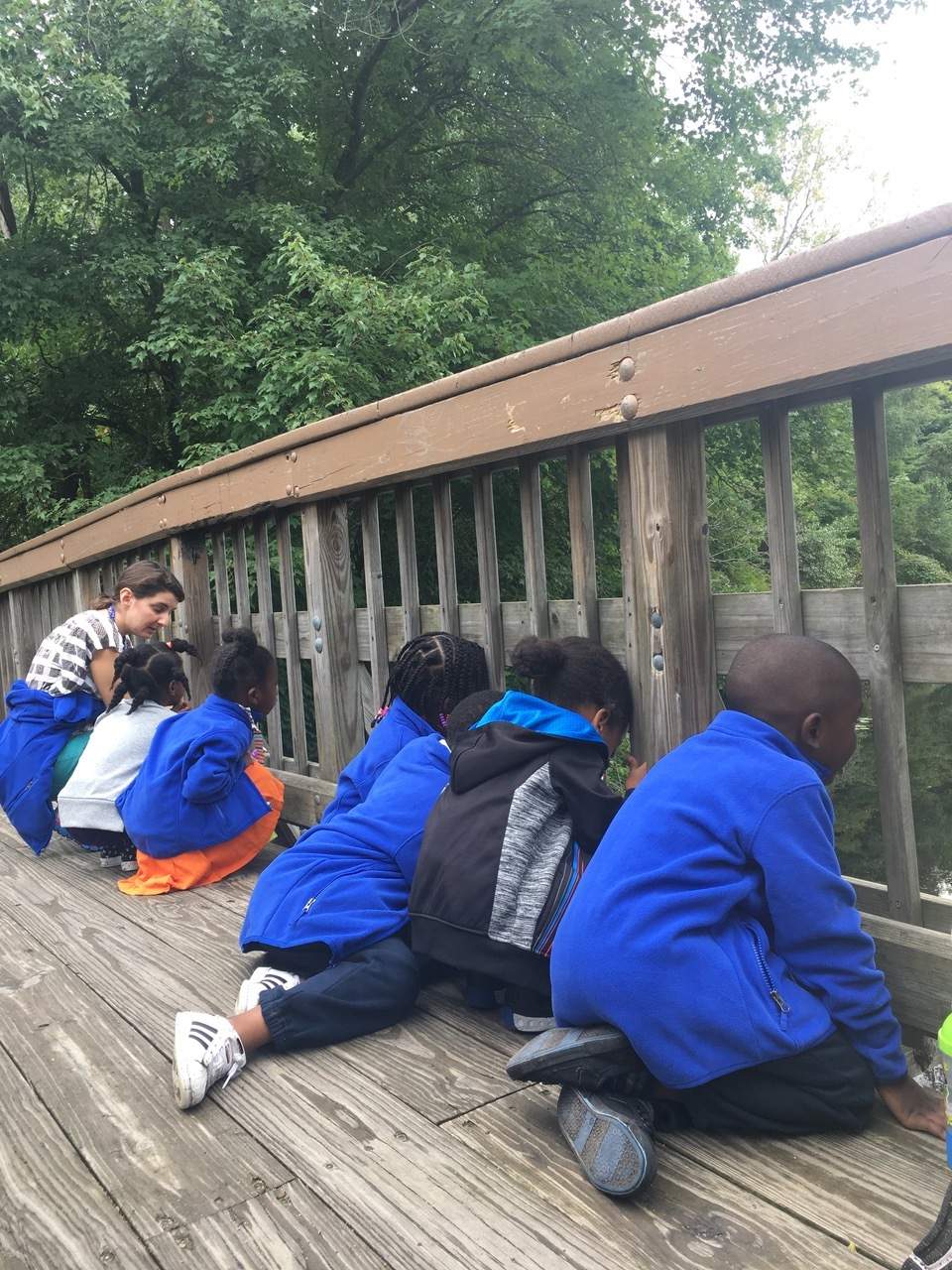 The pathway led to a small bridge that spanned across a pond. Students took in the natural beauty and searched for the pond's inhabitants. Many students enthusiastically searched for small rings in the water that were created by the fish living in the pond.