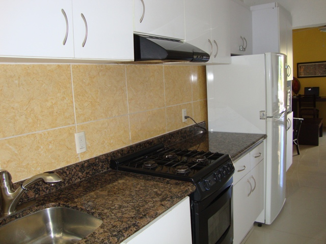 13-GRANITE COUNTER.JPG