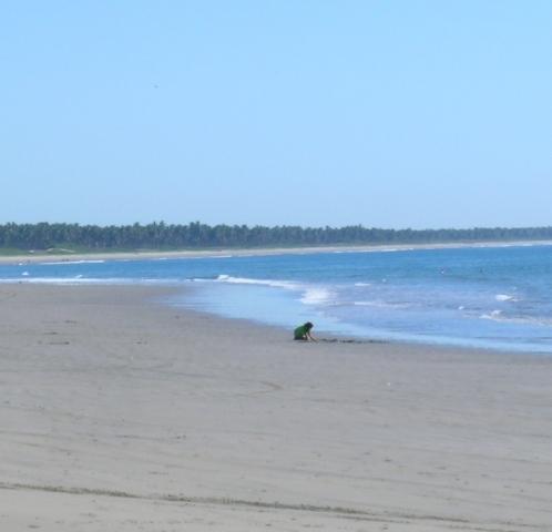 Stone Island Beach.JPG