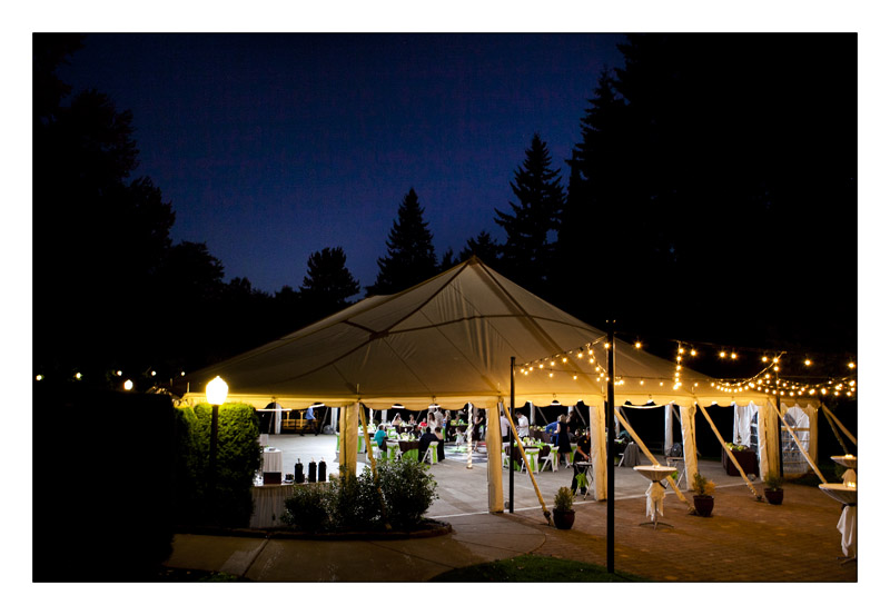 Canopy Wedding under the stars