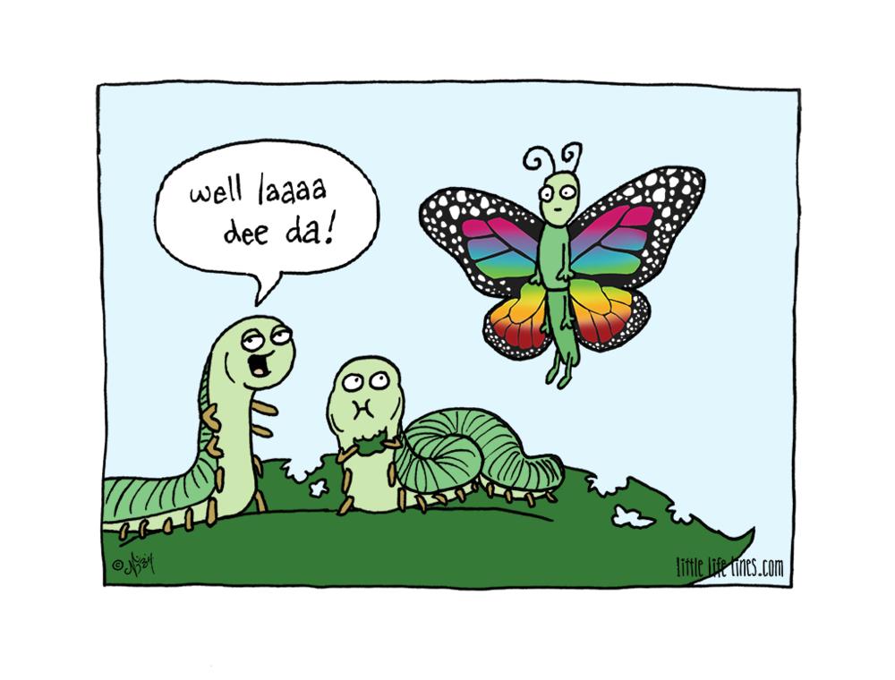 caterpillar becoming a butterfly