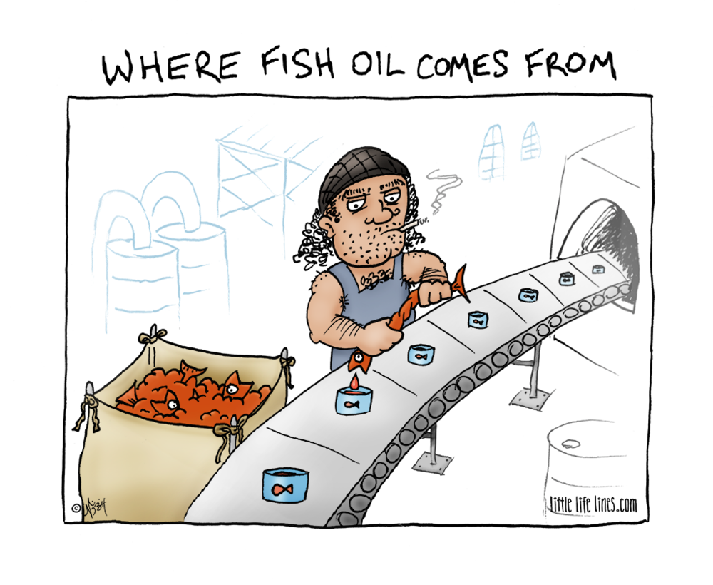 where fish oil comes from