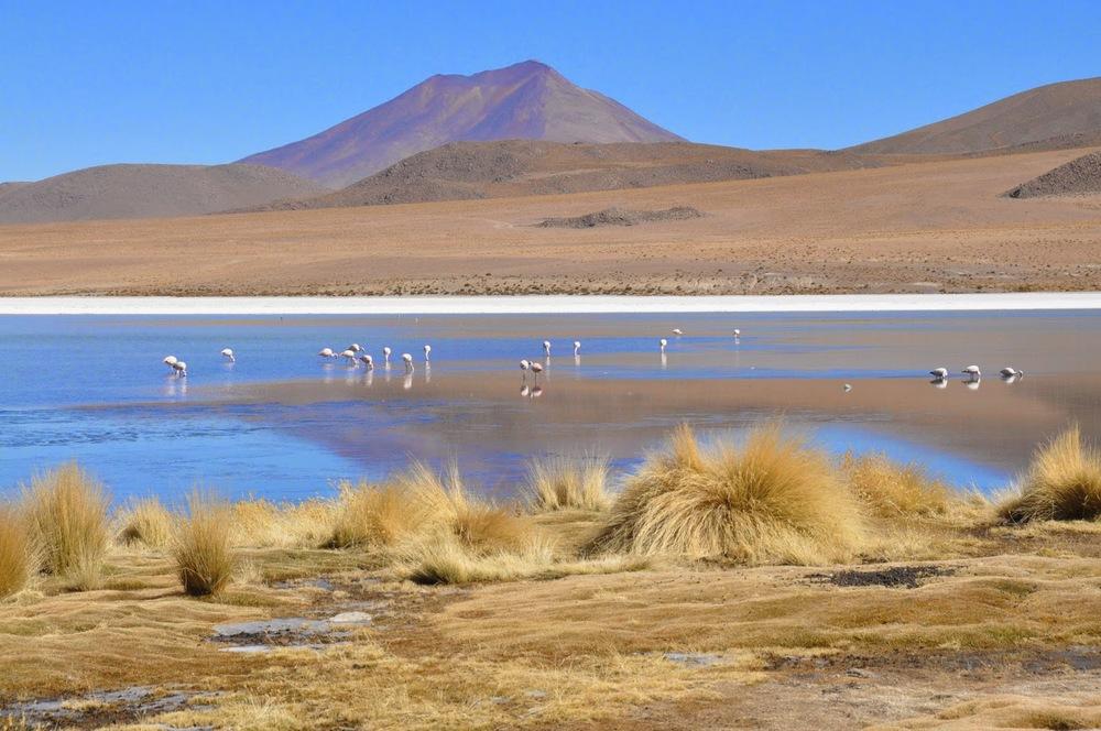 Salar De Uyuni Bolivia Red Planet Blue Lagoon