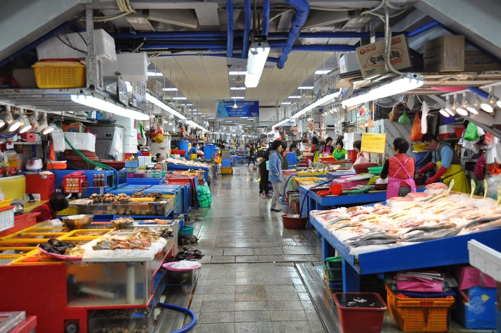 2 days in busan korea best things to do two wandering for Oceanside fish market