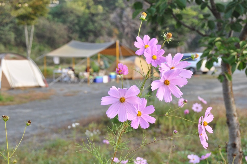 Juwangsan National Park Camping Korea