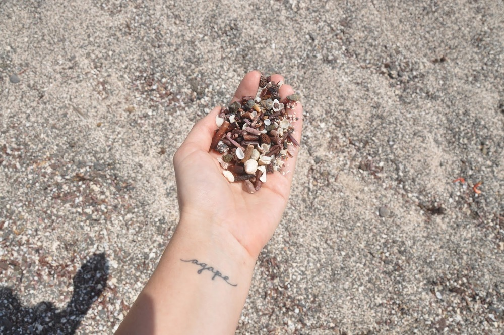 The sand on San Cristobal was made of broken shells and sea urchins