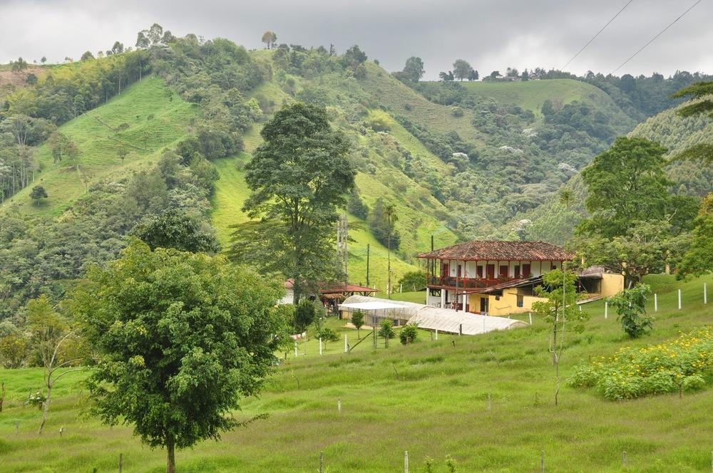 Ocaso Coffee Farm