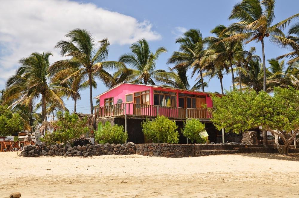 Caleta Iguana Hostel