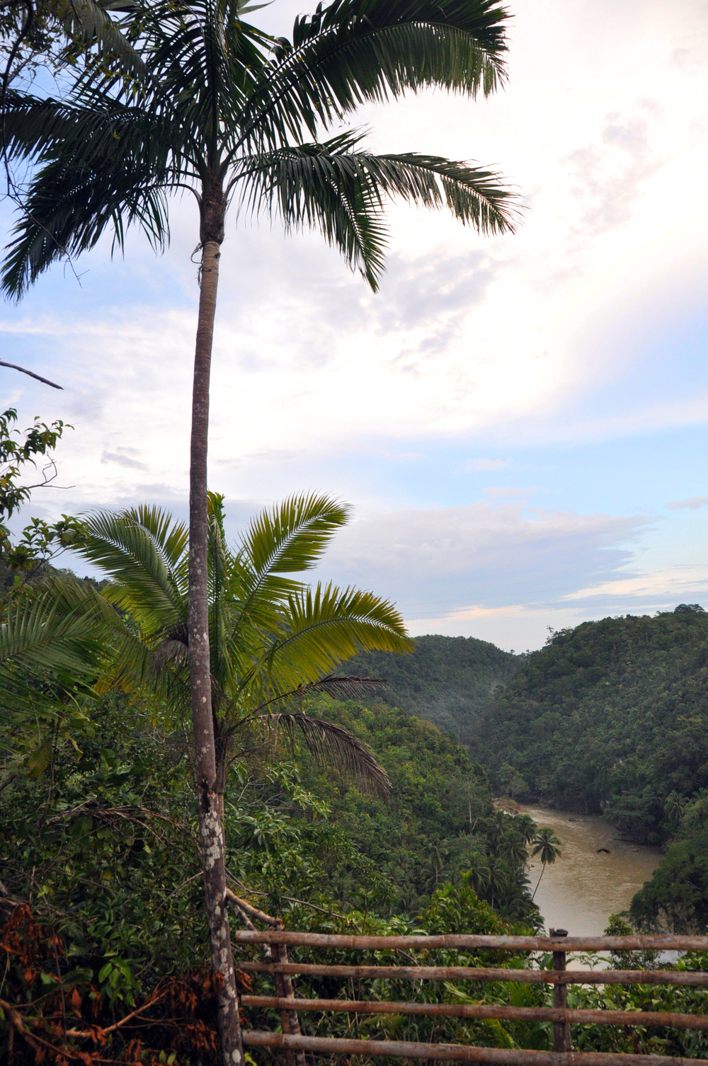 Philippines Bohol Loboc River