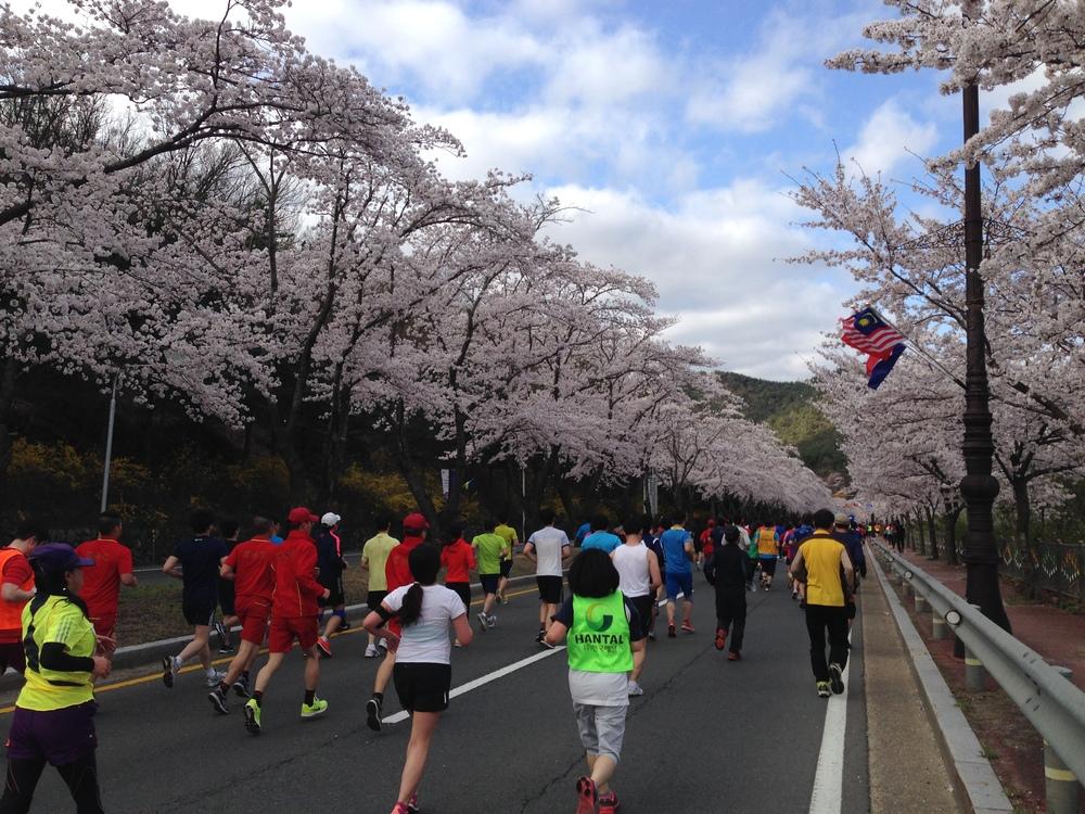 Gyeongju 10K race