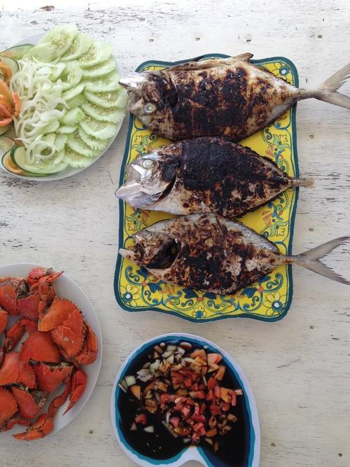 Palawan Philippines Island Hopping Caera Travel Tours Fish