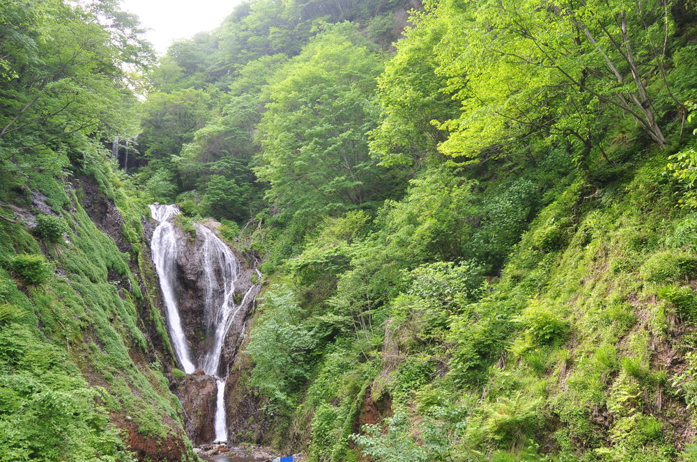 Ulleungdo Waterfall Korea