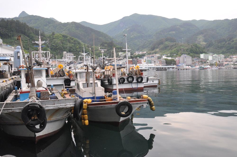 Ulleungdo Harbor Squid Boats