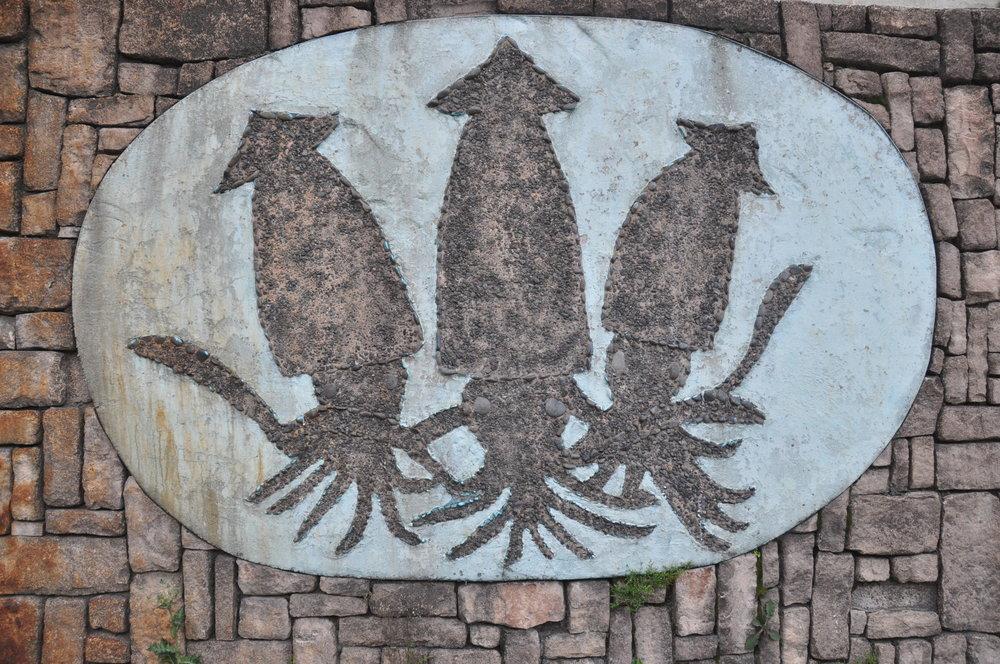 Ulleungdo Squid