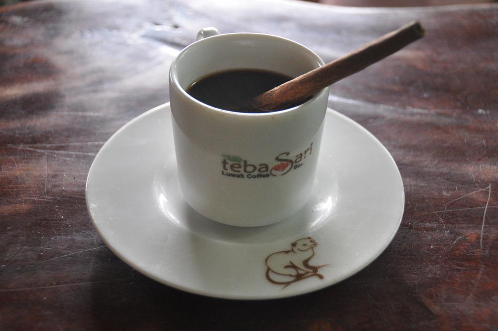 Things NOT to do in Bali Luwak Coffee Bali