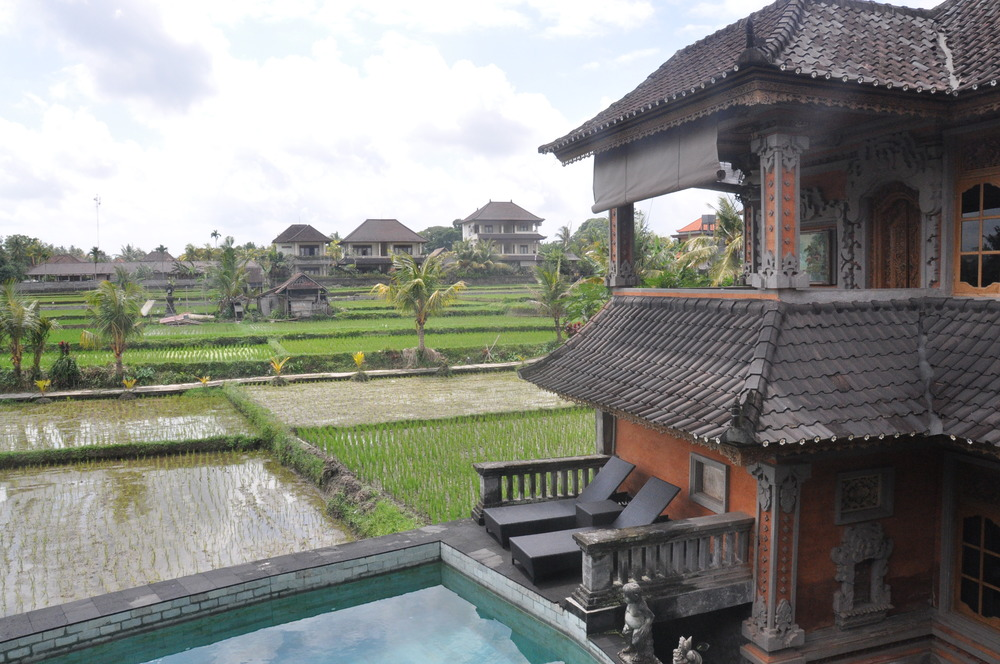 Things to Do in Bali Ala's Green Lagoon Guesthouse Ubud