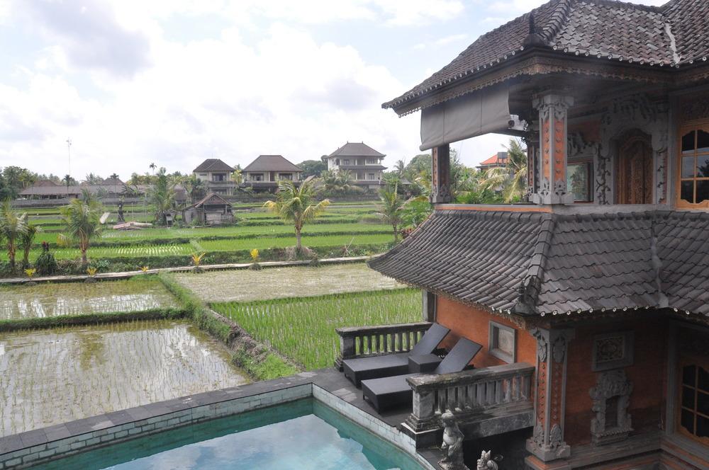 Ala's Green Lagoon Guesthouse Ubud Bali