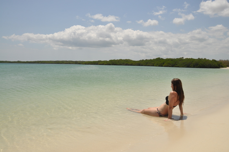 How To Travel The Galápagos Islands On A Budget Two Wandering Soles - Galapagos vacations