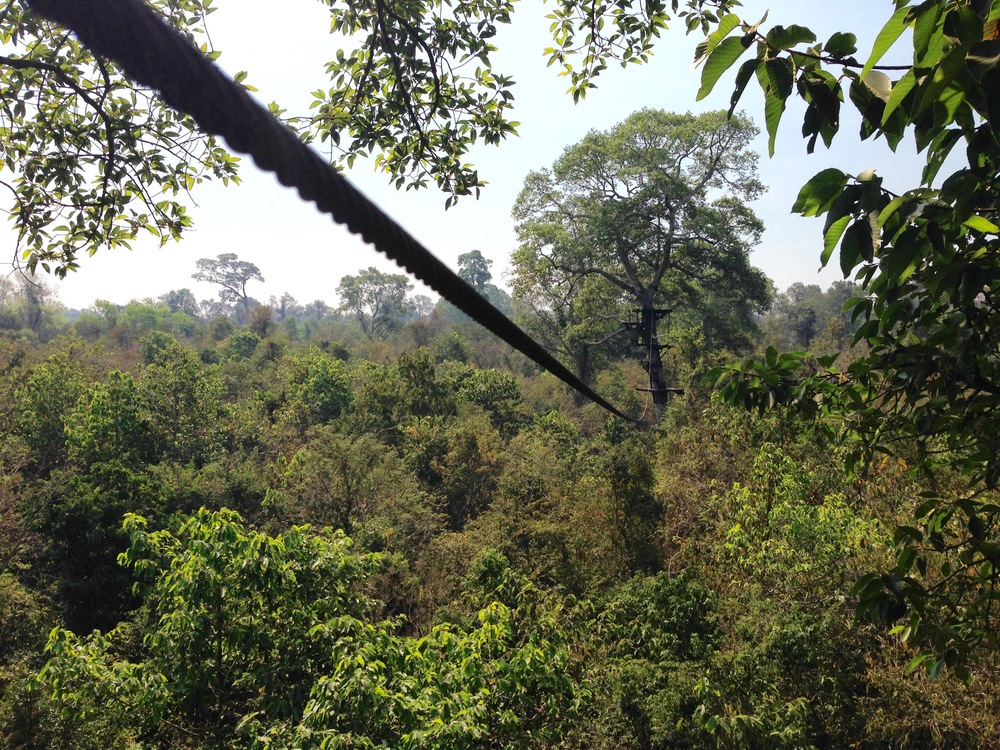 Flight of the Gibbon Angkor Zip-lining