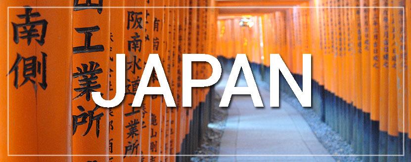 Japan Plum Blossoms