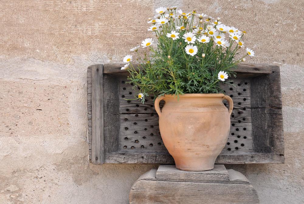 Kelebek Special Cave Hotel Flower pot