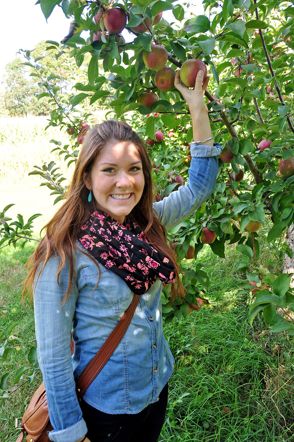 Minnesota Apple Orchard