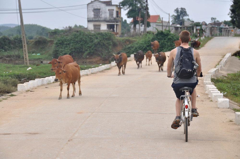 Biking in Phong Nha Vietnam Itinerary