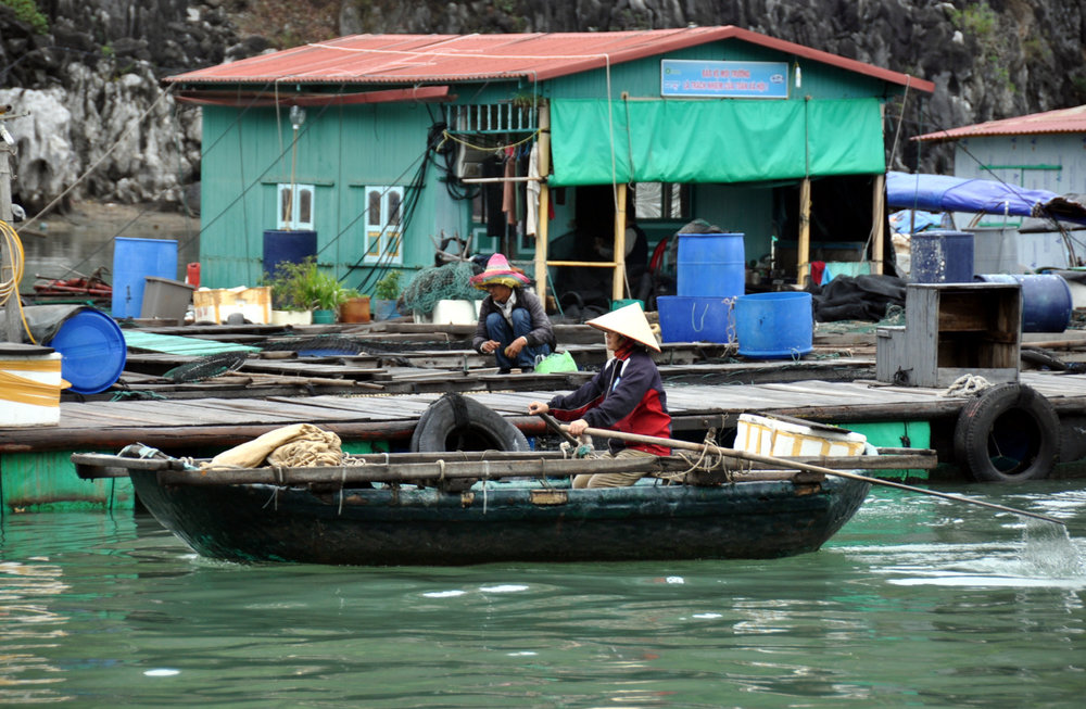 Ha Long Bay Local Fishing Vietnam Itinerary