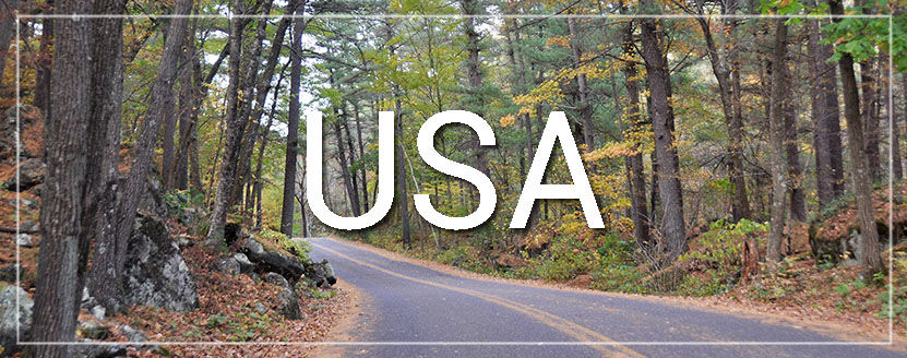 USA Forest Road