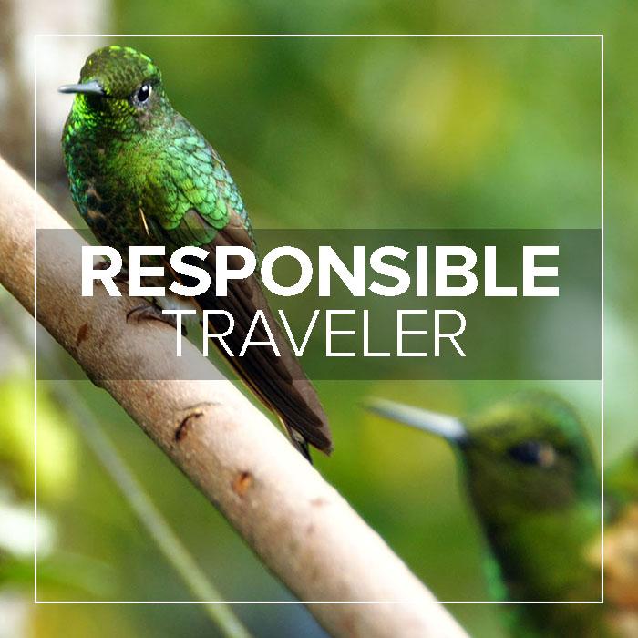 Responsible Traveler