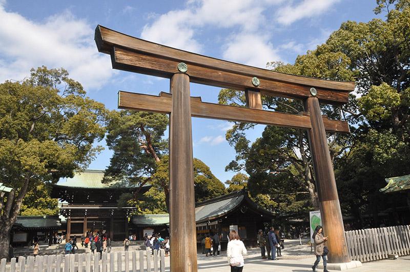 Meiji Shrine Tokyo Japan Wood