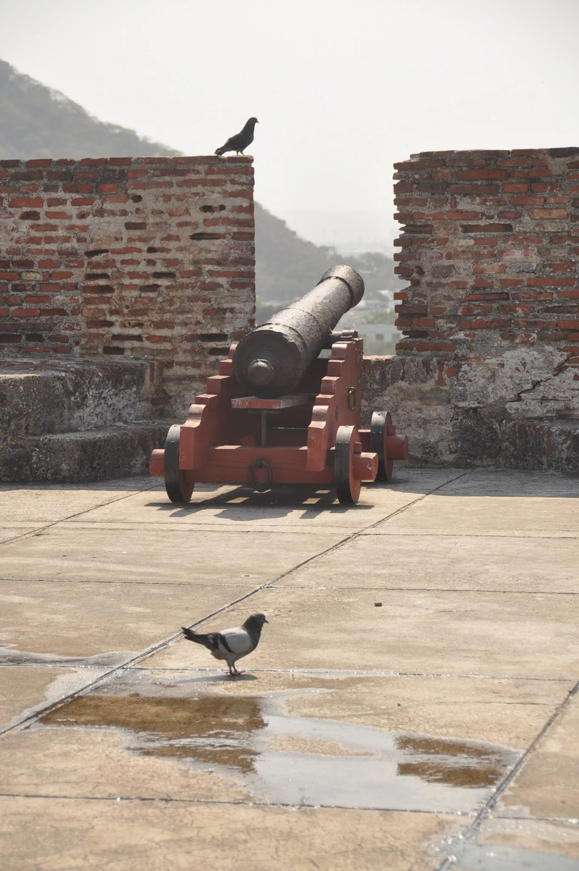 Castillo San Felipe de Barajas cannon