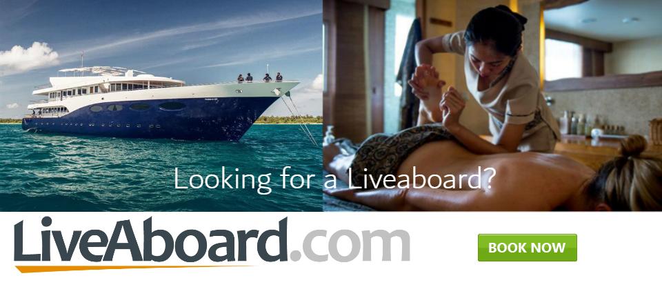 Liveaboard Banner