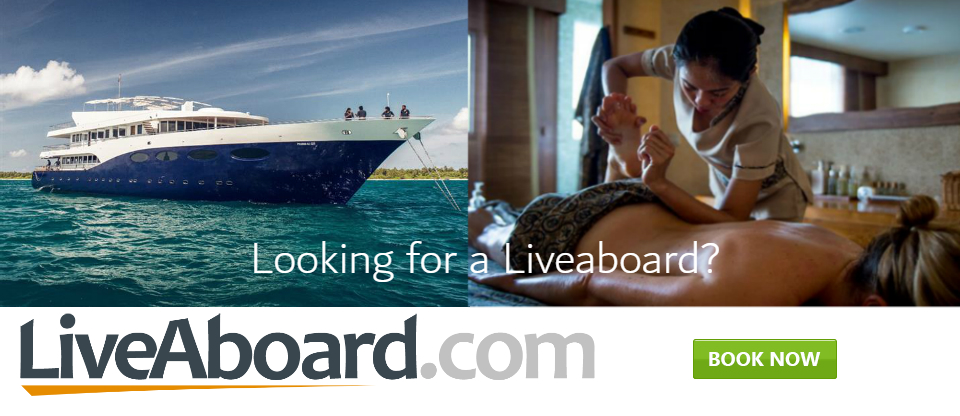 Liveaboard Galapagos Banner