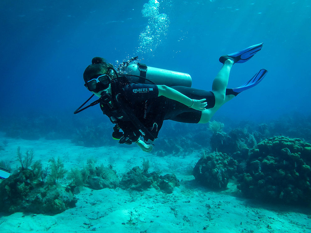 Scuba Diving Bay Islands Roatan Divers