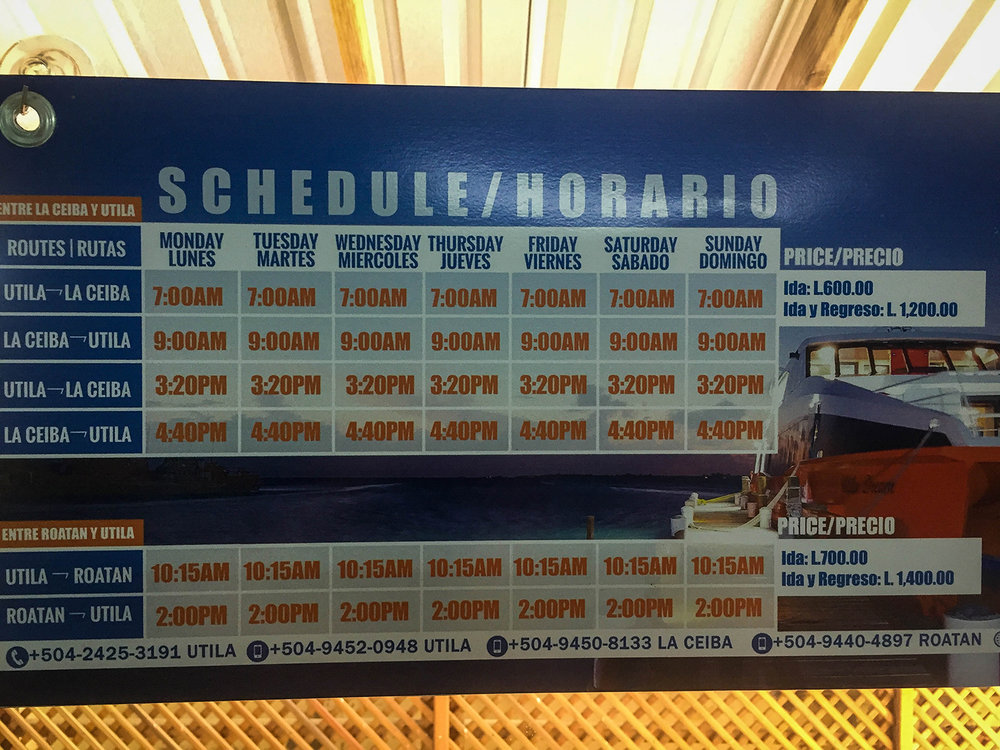 Roatan vs. Utila Honduras Bay Island Utila Dream Ferry Schedule