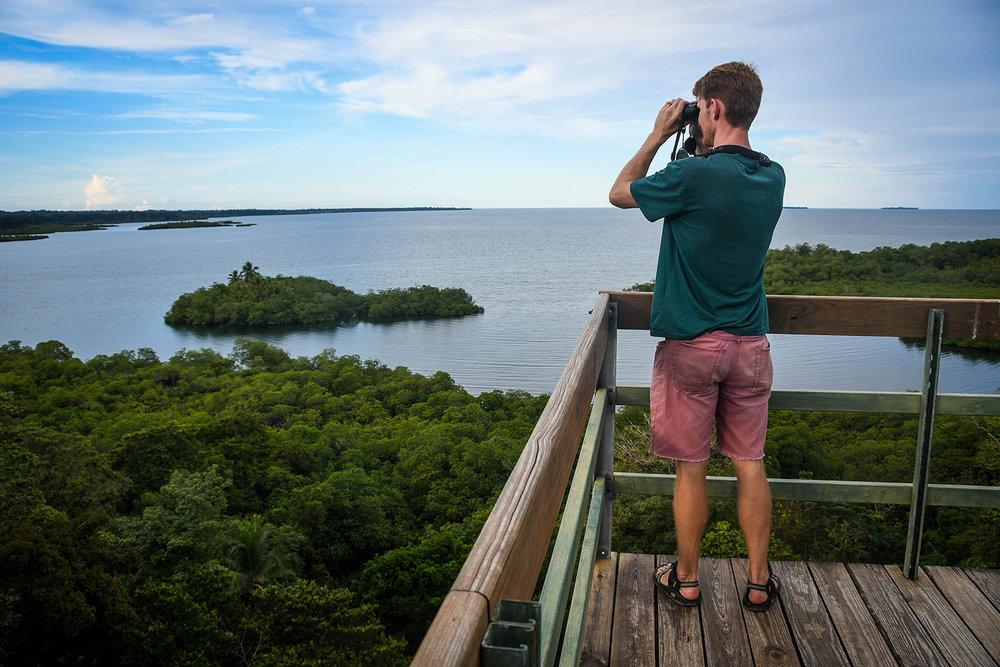 Bocas Del Toro Tranquilo Bay Bird Watching Tower