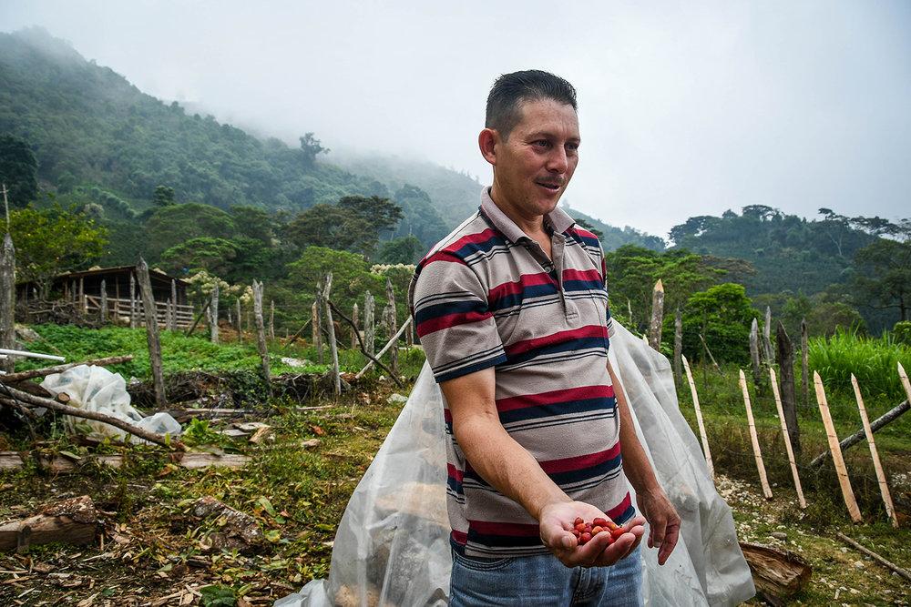 Coffee Tour Honduras Milton Farmer