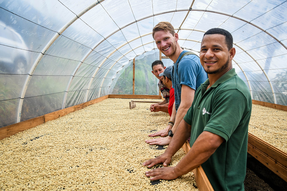 Coffee Tour Honduras Drying Coffee Beans