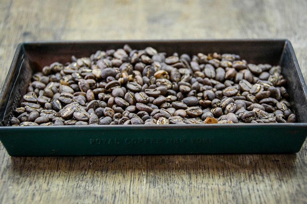 Coffee Tour Honduras Roasted Coffee Beans