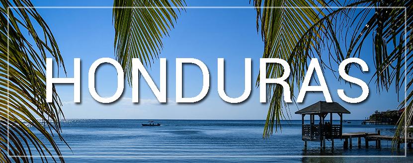 Honduras Water and Palm Tree
