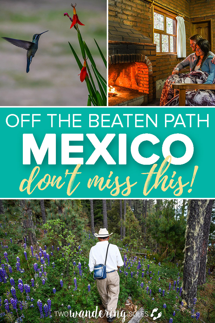 Off the Beaten Path Mexico. Make sure you go to the Sierra Norte Mountains.