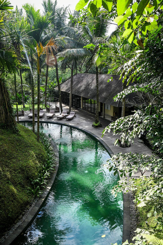 Komaneka at Bisma Ubud Resort Review Pool and Palm Trees