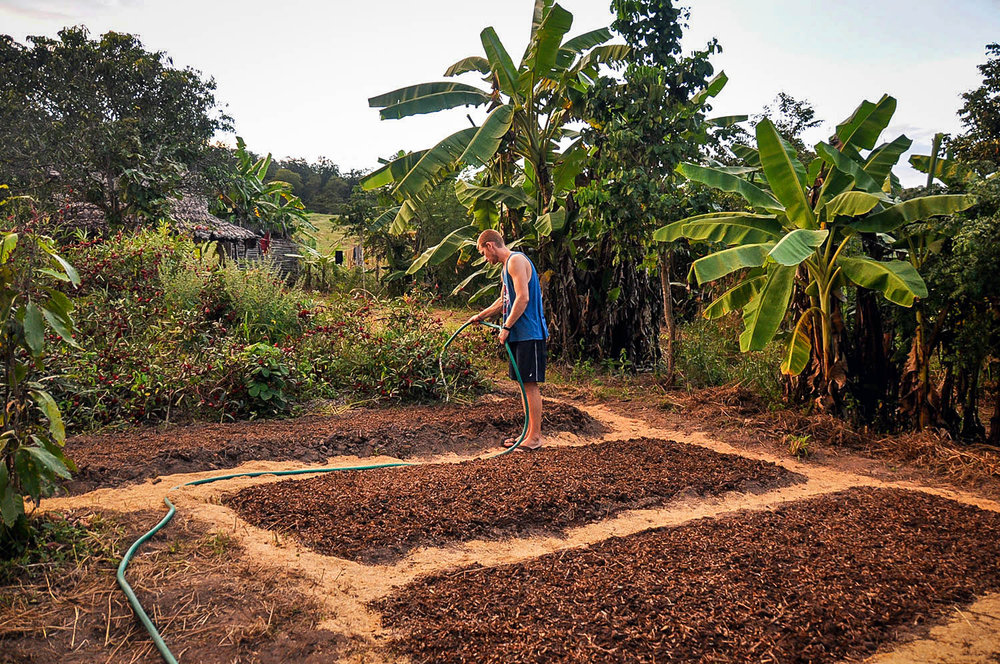 How We Afford to Travel WWOOF Farming