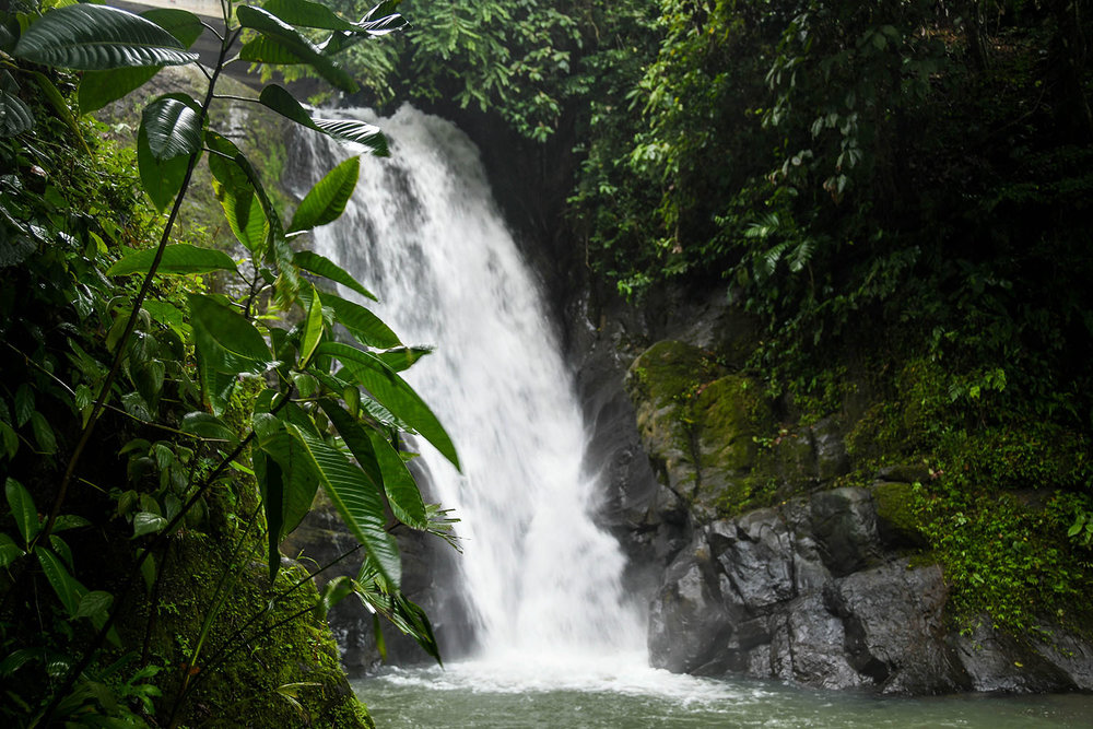 Puerto Viejo Travel Guide BriBri Waterfall