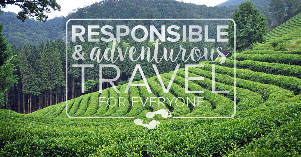 Green Tea Fields Responsible & Adventurous Travel